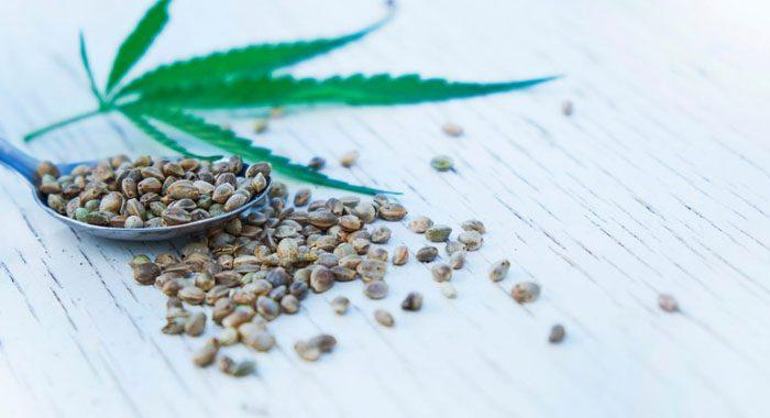benefits of CBD edibles