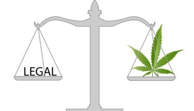 economic benefits of medical cannabis