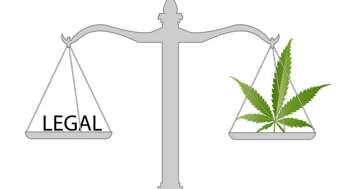 economic benefits of medical cannabis