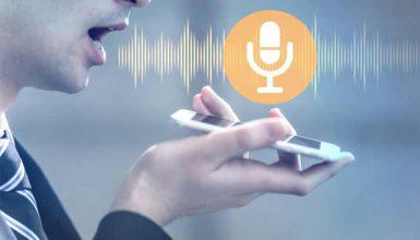 Translate Voice to the English Language
