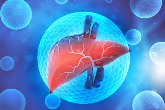 How can you keep your liver healthy
