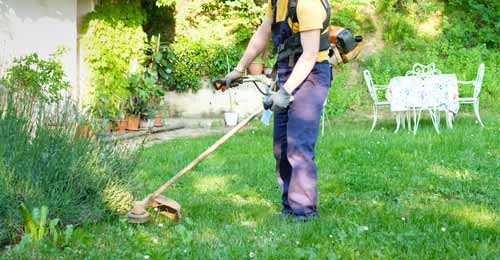 Categories of Weed Eater and How it Works